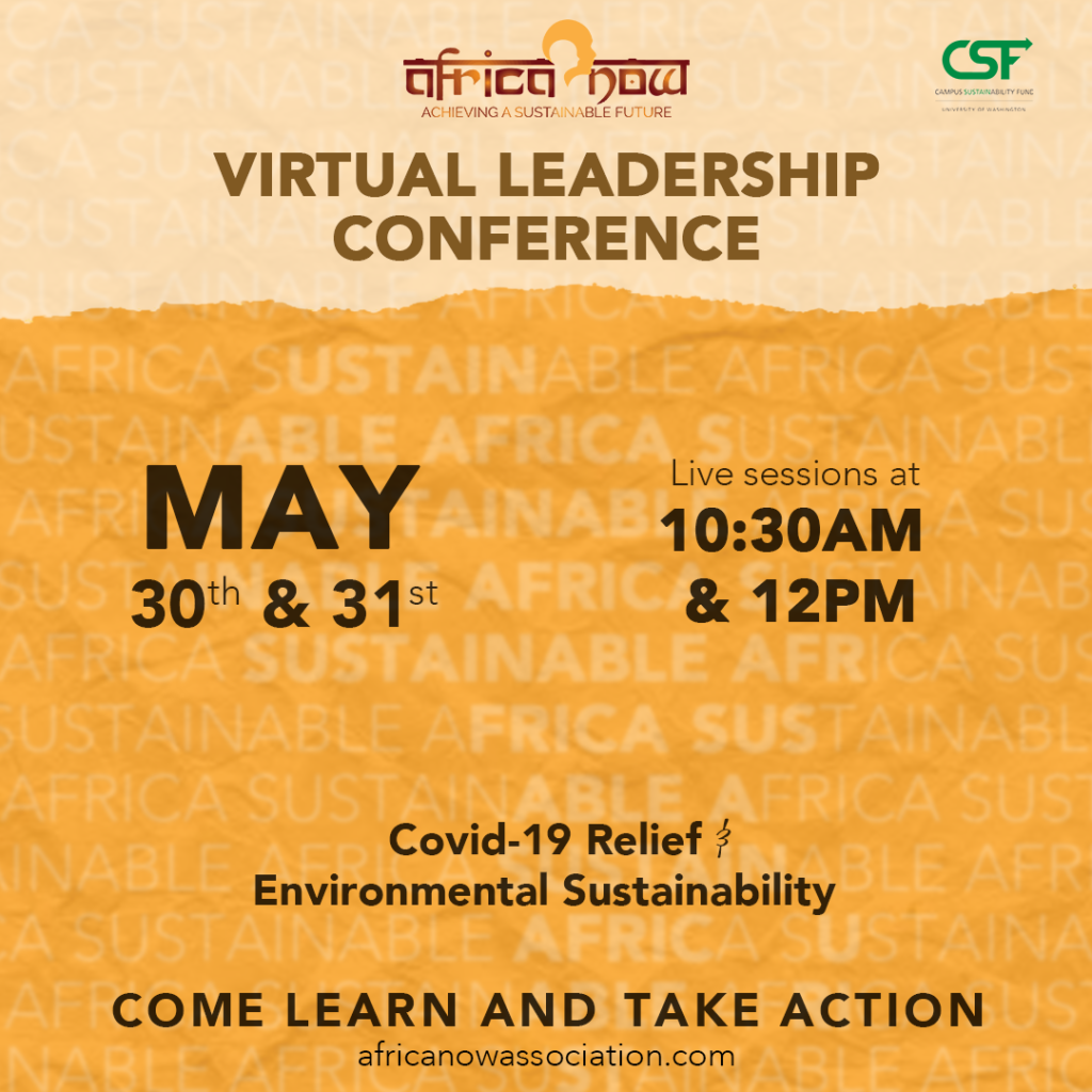 Africa Now Virtual Leadership Conference